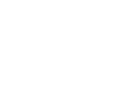 BluChipFinancial