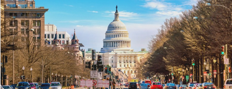 the-united-states-capitol-building-dc-picture-id975466384